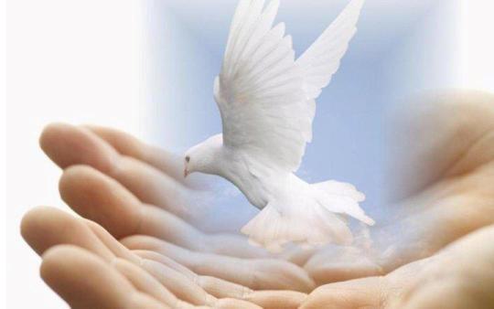 Духовно нравственное воспитание дошкольников